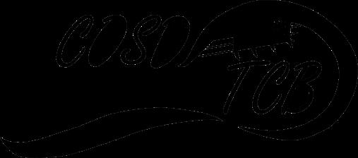 logo-conoir